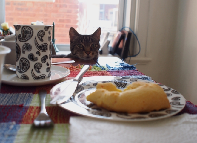 One chipa is resting on a small plate with a cup of coffee in front of it. A cat is sitting across, resting his head on the table and staring at the chipa.